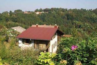 Vakantiehuizen Moselle EUR-FR-57870-04