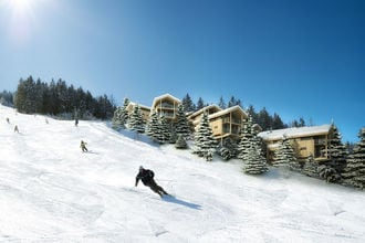 Ski in Ski out Chalet Reiteralm