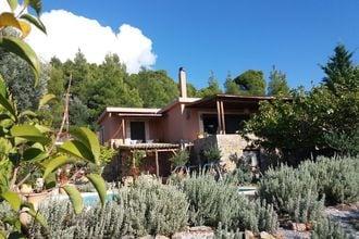 Evia Fox House