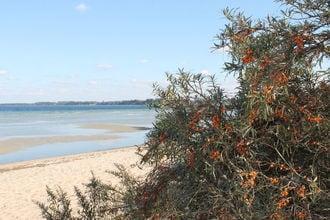 Ferienwohnung mit Garten Strandnah