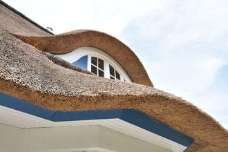 Ferienhaus Strandvogel mit Sauna und Kamin in Rerik