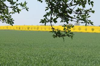 Landgut Detershagen L