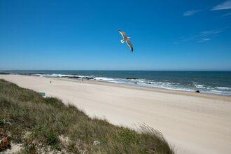 Dos Mudos Luxury Ocean View