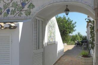 Quinta Velha - Girassol