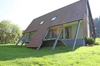 Dachsbau