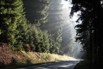 Im Frankenwald