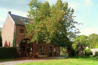 Vakantiehuis Houyet (Mesnil - Eglise) EUR-BE-5560-07