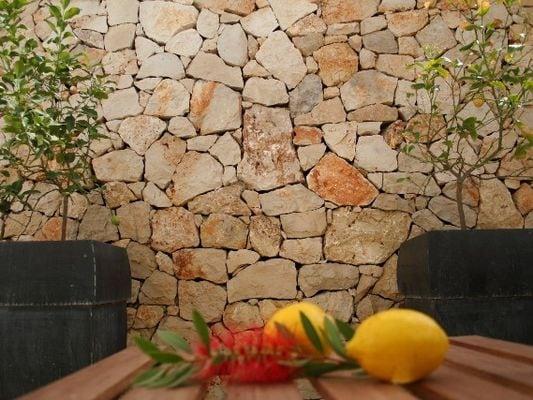 Ferienhaus Modernes Appartement in Apulien mit Terrasse (236362), Pescoluse, Lecce, Apulien, Italien, Bild 8