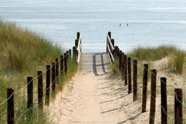 Holland | Zeeland | Holiday home Waterrijk Oesterdam - Oesterdam 8-pers | all year | AreaSummer5KM