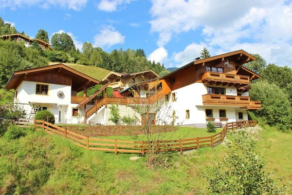 Alpensteinbock Saalbach C