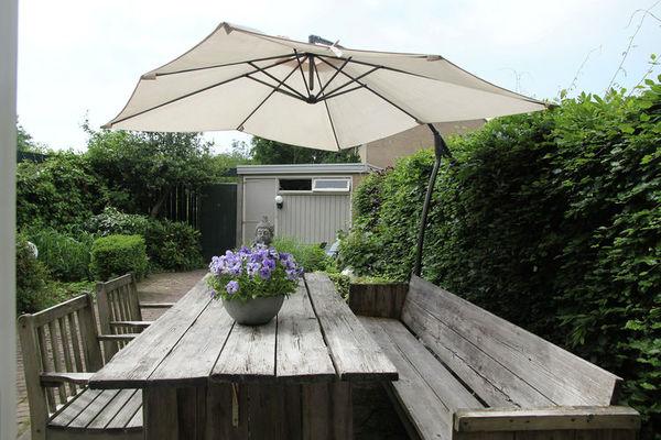 sunny-garden