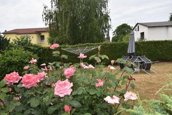 Ferienwohnungen/Ferienhäuser: 2-Raum-Ferienhaus/ Terrasse/ Ostseebad/ Sandstrand (max. 2 Personen)