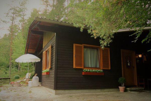 Vakantie accommodatie Oberösterreich Oostenrijk 4 personen
