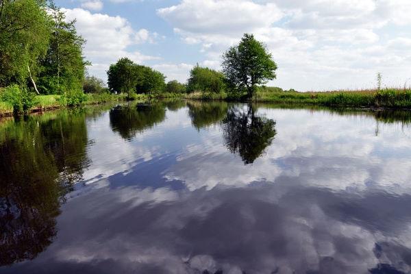 Het Bosmeer