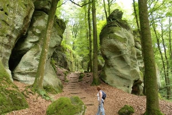 Ferienwohnung Eifellux 2 (560035), Körperich, Südeifel, Rheinland-Pfalz, Deutschland, Bild 38