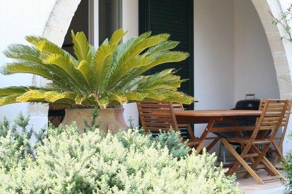 Ferienhaus Due (236360), Santa Maria al Bagno, Lecce, Apulien, Italien, Bild 10