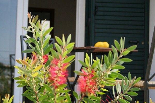 Ferienhaus Vornehmes Ferienhaus bei Salento mit Blick auf die Küste (236361), Pescoluse, Lecce, Apulien, Italien, Bild 8