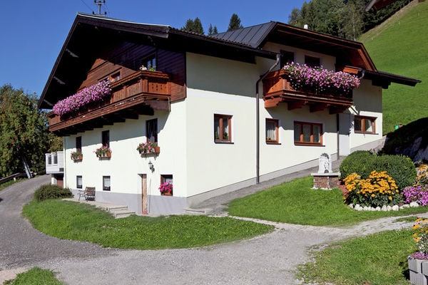Appartment Roswitha in Austria - a perfect villa in Austria?
