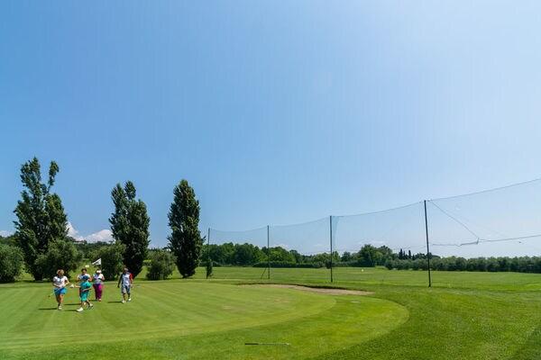 Golf D