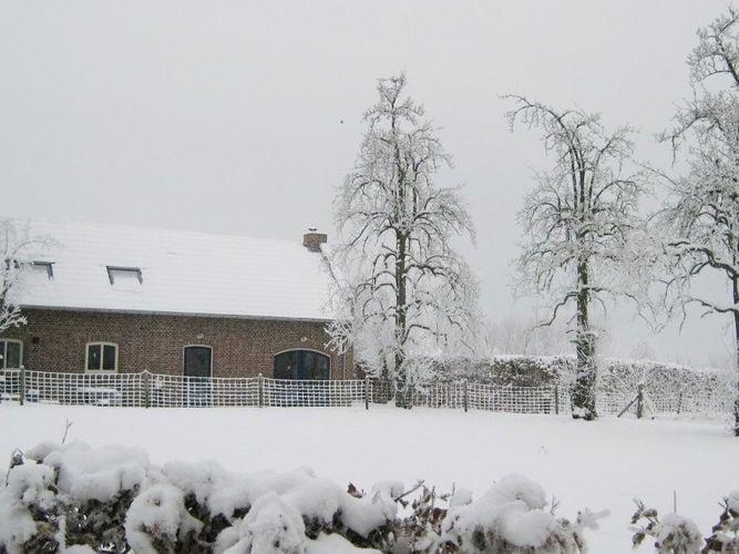 Ferienhaus Schöner Bauernhof am See in St. Odiliënberg (65823), Sint Odilienberg, Midden-Limburg, Limburg (NL), Niederlande, Bild 35