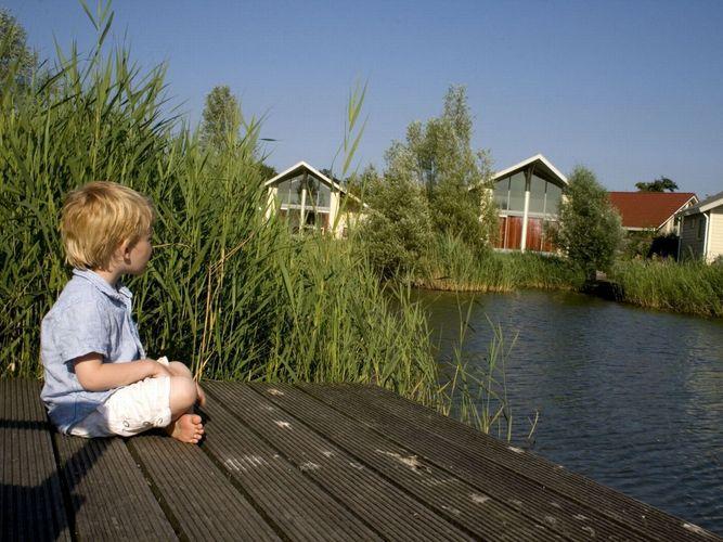 Ferienhaus Villapark Paardekreek 2 (119828), Kortgene, , Seeland, Niederlande, Bild 3