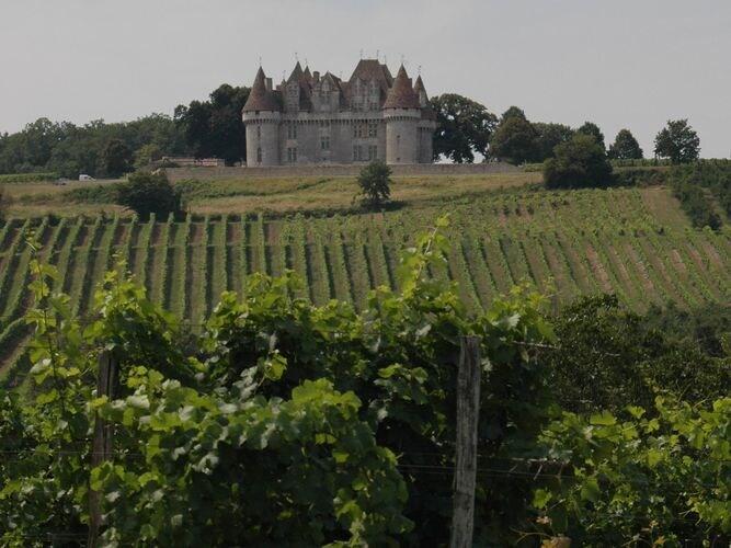 Maison de vacances Komfortables Chalet inmitten von Weinbergen in Dordogne (159963), Pineuilh, Gironde, Aquitaine, France, image 39