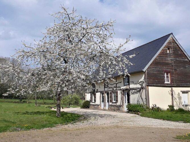 Ferienhaus Gemütliches Ferienhaus in Le Mesnil-Boeufs mit Garten (223542), Isigny le Buat, Manche, Normandie, Frankreich, Bild 30