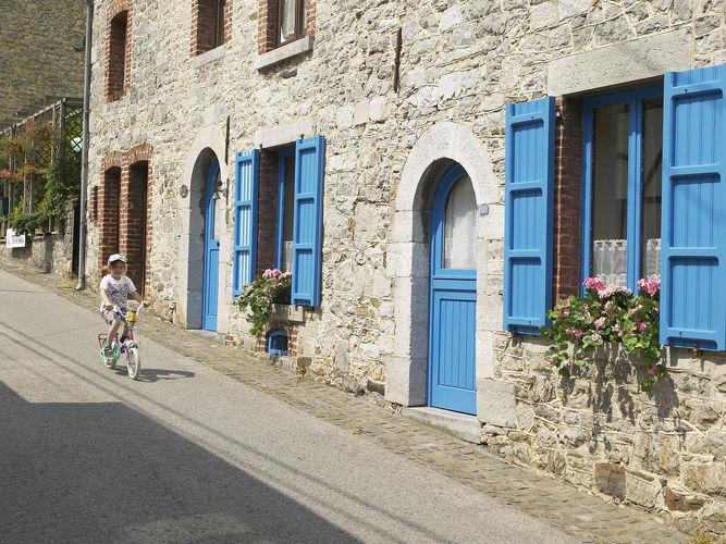 Ferienhaus Waulsort 1 (377555), Waulsort, Namur, Wallonien, Belgien, Bild 9