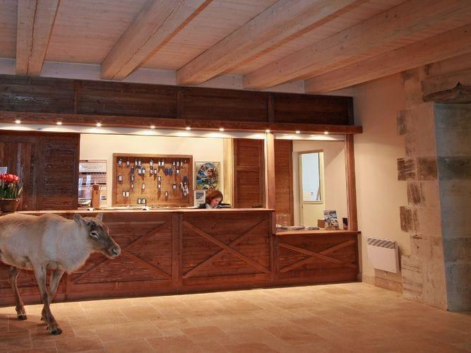 Ferienwohnung Traditionelle Wohnung nur 300 m von den Thermen entfernt (236610), Saint Lary Soulan, Hautes-Pyrénées, Midi-Pyrénées, Frankreich, Bild 6