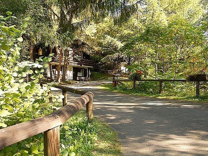 Ferienhaus Gemütliches Chalet mit Kamin in einem Waldgebiet (258670), Schönecken, Südeifel, Rheinland-Pfalz, Deutschland, Bild 14