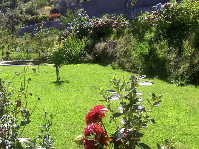 Ferienhaus Cottage auf dem Land mit Garten mit Grill in Ponte De Lima (277709), Ponte de Lima, , Nord-Portugal, Portugal, Bild 8