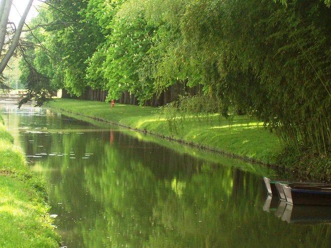 Ferienwohnung Relais du Plessis 1 (360755), Richelieu, Indre-et-Loire, Centre - Val de Loire, Frankreich, Bild 22