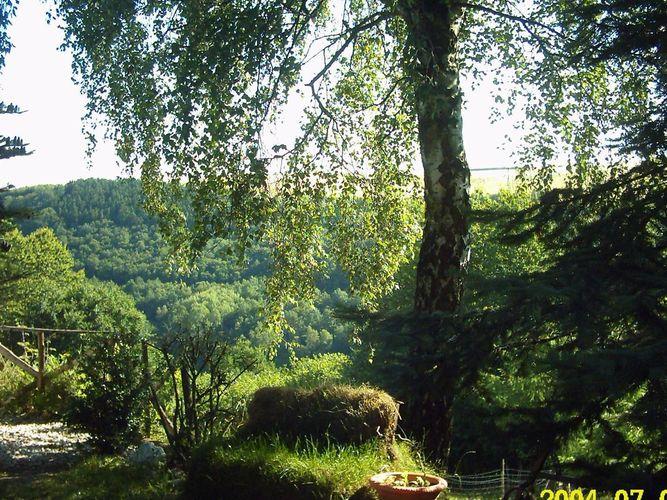Ferienwohnung Schwalbennest (601357), Morbach, Hunsrück, Rheinland-Pfalz, Deutschland, Bild 16