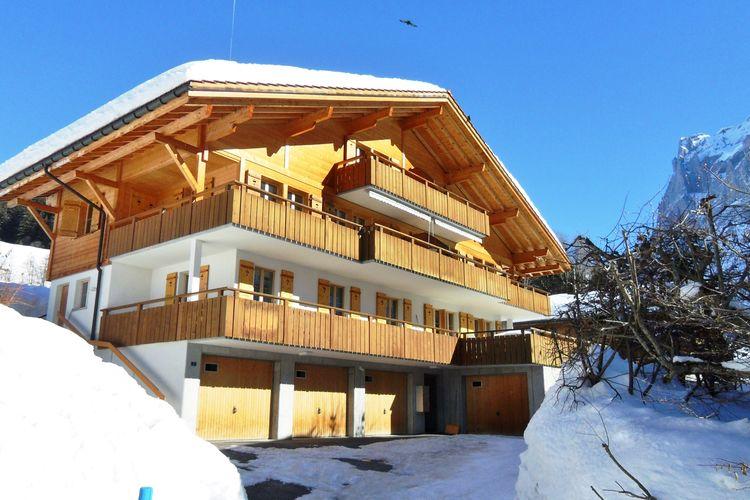 Grindelwald 4 - Apartment - Grindelwald