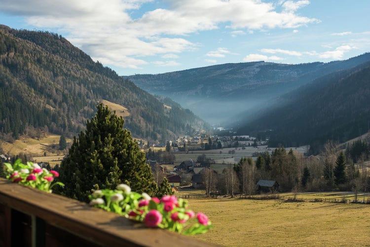 Ferienwohnung Alpenrose (679231), Thomatal, Lungau, Salzburg, Österreich, Bild 20