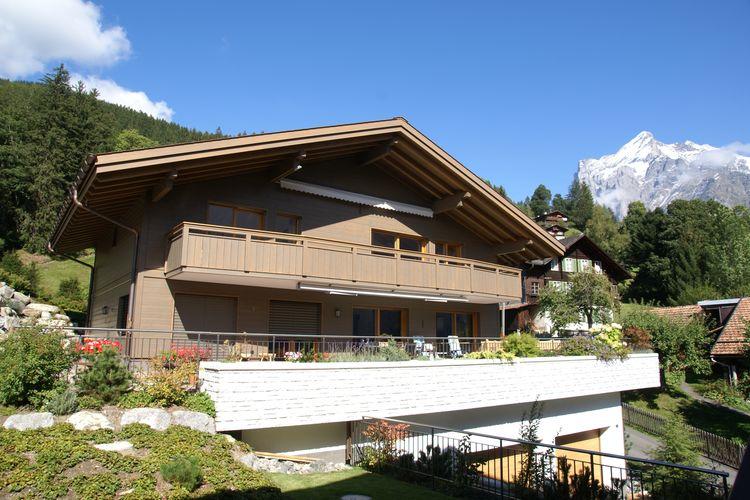 Grindelwald 13 - Apartment - Grindelwald