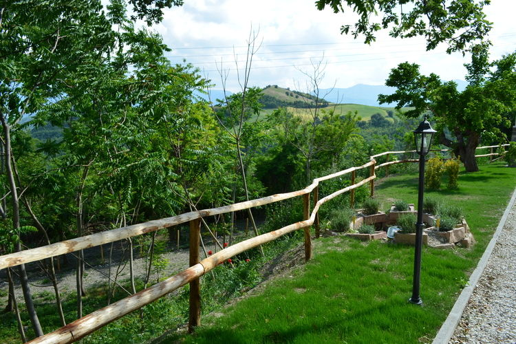 Holiday apartment Giammy (672853), Acqualagna, Pesaro and Urbino, Marche, Italy, picture 36