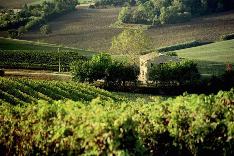 Ferienhaus Villa Montelipa (698250), Montecassiano, Macerata, Marken, Italien, Bild 3