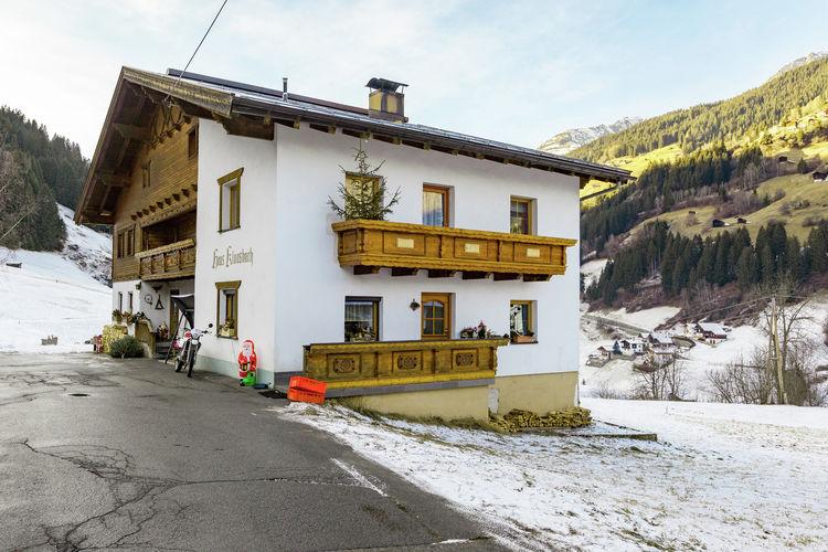 Vakantiehuizen Oostenrijk | Tirol | Appartement te huur in See   met wifi 4 personen