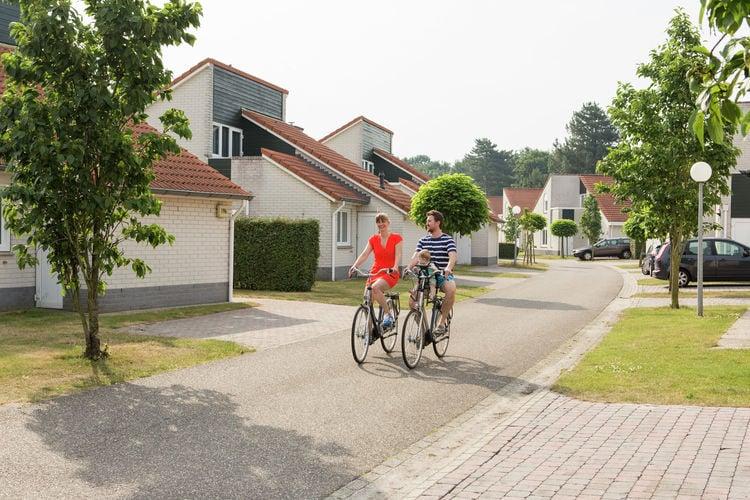 Chalet Nederland, Limburg, Arcen Chalet NL-5944-21
