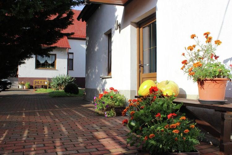 Schenkendöbern Vakantiewoningen te huur Vrijstaand vakantiehuis in het Brandenburger Heideland op boerderij