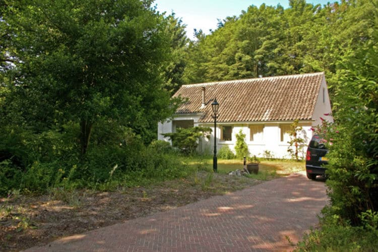 Holland | North Sea Coast North | Holiday home De Mossel | all year | ExteriorSummer