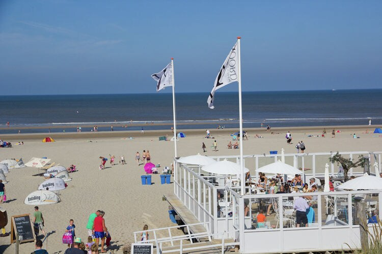 Holland | North Sea Coast North | Holiday home De Mossel | all year | AreaSummer5KM