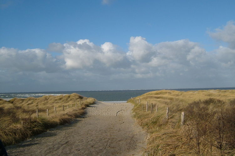Holland | Zeeland | Holiday home Springtij | all year | AreaSummer5KM