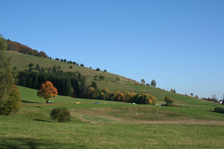 Ferienwohnung Christa (730072), Schönau (DE), Schwarzwald, Baden-Württemberg, Deutschland, Bild 20
