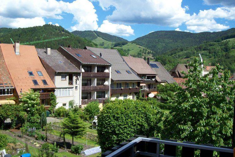 Ferienwohnung Christa (730072), Schönau (DE), Schwarzwald, Baden-Württemberg, Deutschland, Bild 16
