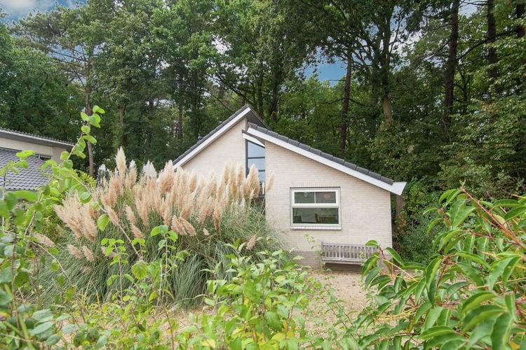vakantiehuis Nederland, Noord-Holland, Schoorl vakantiehuis NL-3348-01