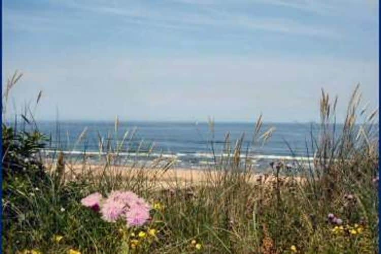 Holland | North Sea Coast North | Holiday home Helmgras I | all year | Ambiance