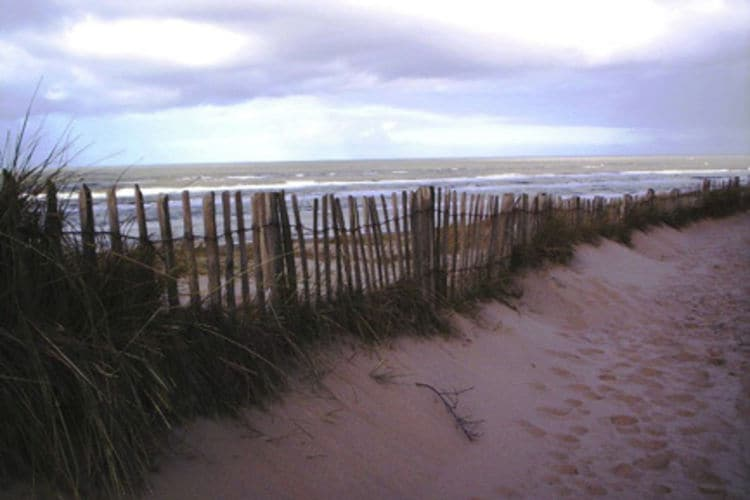 Holland | North Sea Coast North | Holiday home Helmgras I | all year | AreaSummer20KM