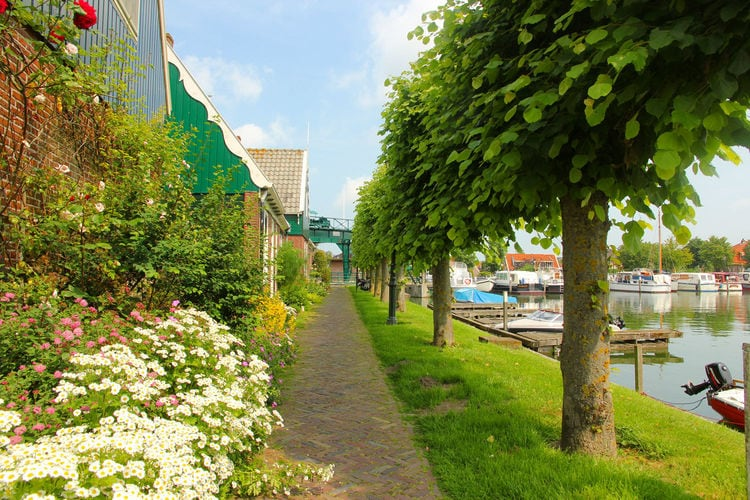 Holland | North Sea Coast North | Holiday home Aan de Haven | all year | ViewSummer